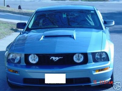 Looking for shelby hood scoop shelby forums carroll shelby 65291e freerunsca Choice Image