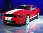 SEMA Mustangs with Shelby's name on them