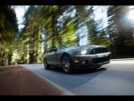 2010 Shelby Gt500 by rshelby