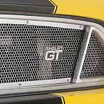 2015 Shelby GT Grill by rshelby