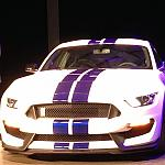 2016 G.T. 350 by rshelby