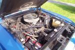 1967 Shelby GT350 #2264 by daltondavid